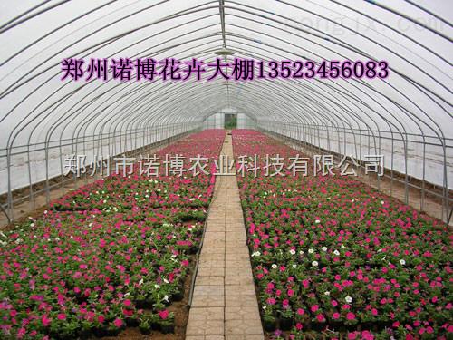 郑州花卉温室大棚骨架 全钢结构温室建造