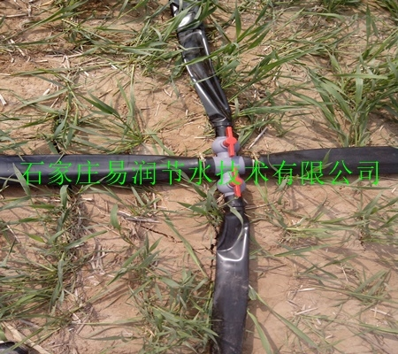 岢岚县供应全国各地农业大棚喷水带设备