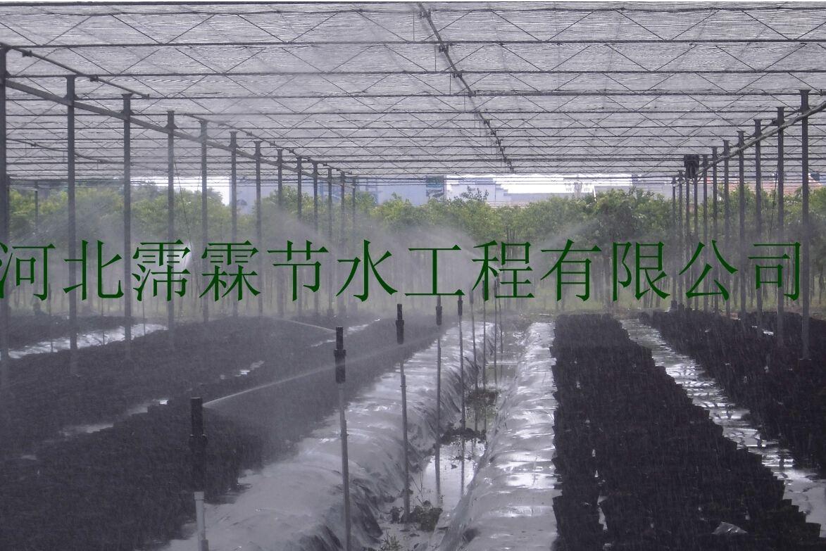 山西蘑菇微喷头生产厂家