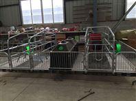 热镀锌欧式母猪产床厂家母猪分娩产床尺寸报价