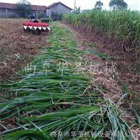 手扶式水稻收割机 小型农作物收获机