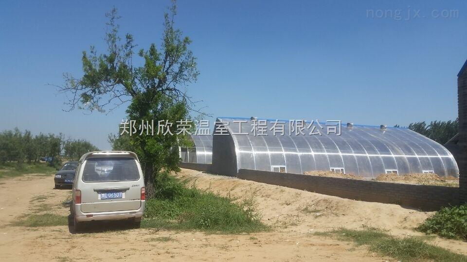 铜陵阳光板温室建造安装农业大棚建造报价