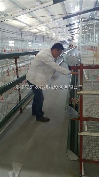 重庆鸡笼蛋鸡笼畜禽笼养设备配套供应