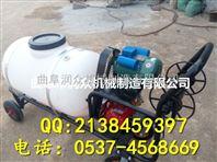 大容量药桶远程喷雾器 细雾均匀 节水节药手推式喷雾器