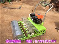 蔬菜精播播种机