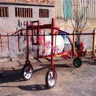 新款果园专用自走打药车 三轮车自走式打药机 果园柴油喷雾机