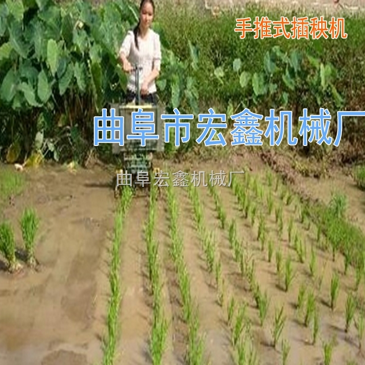 2017新款水稻插秧機 手搖式插秧機 小型水稻插秧機價格