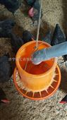 机械喂养设备 智能养殖设备 饲料喂食养殖料桶