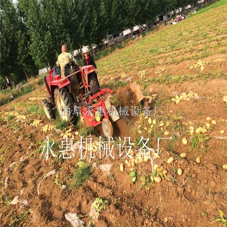江蘇土豆收獲機廠家熱銷,齒輪傳動的土豆收獲機價格