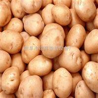 厂家精品直销多用途新型玉米淀粉机