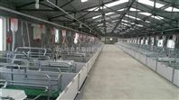 养猪设备产床猪设备产床河北养猪设备厂