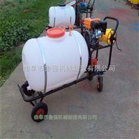 大马力车推式喷雾器 高压拉管式喷雾器 优质汽油喷雾器