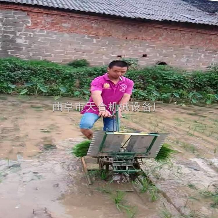 專用新型水稻插秧機 手搖步退式水稻插秧機 自動乘坐式插秧機