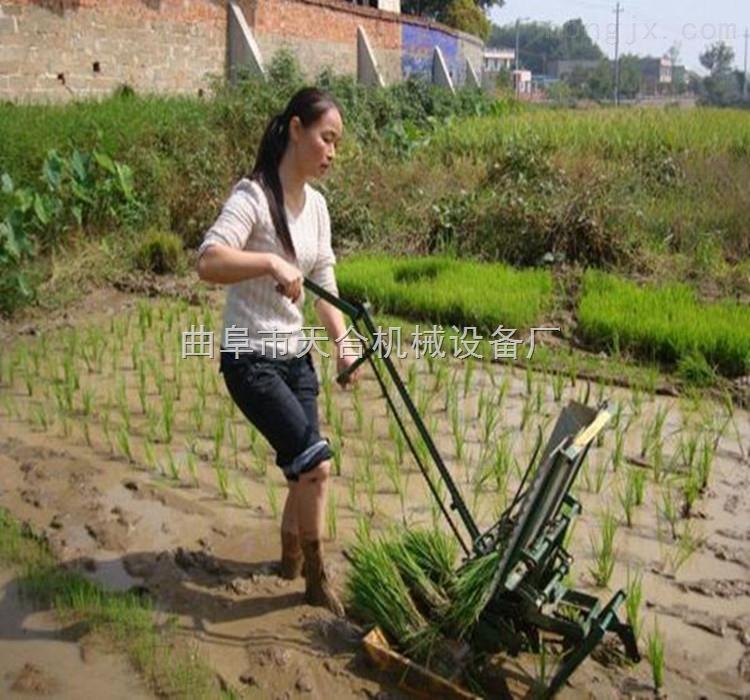 专业生产水稻插秧机 手摇步退式水稻插秧机 自动乘坐式插秧机