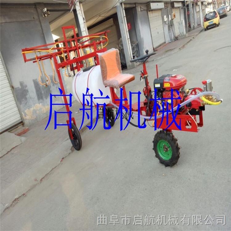 优质农药水稻喷药机 手推拉管式喷雾器 果园打药喷雾器价格