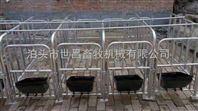 母猪定位栏育肥栏养猪设备猪用定位栏生产厂家