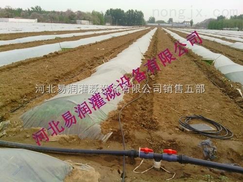 灌溉农业滴灌管 陕西榆林PE水管 滴水毛管设备