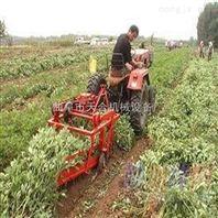 根茎累收获机土 豆收获机 手扶带动60/70/80厘米割幅宽度收获机报价