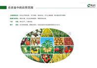 无土栽培营养液消毒处理设备机器营养液杀菌处理机