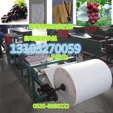 GDJ-D-P2大规格单层葡萄果袋机