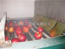 FXX-GDL小型苹果清洗打蜡机哪有卖的,苹果清洗打蜡机