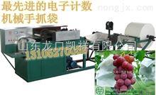 GDJ-D-P河北葡萄袋机厂家---葡萄袋机---生产葡萄袋的机器