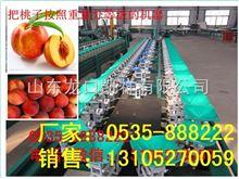 XGJ-T桃子选果机厂家蜜桃自动分选大小油桃选果机