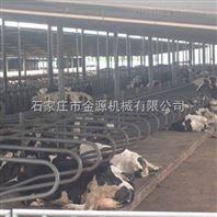 湖北养殖场牛卧栏生产厂家