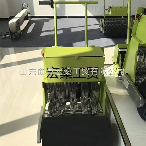 田阳县人力手推谷物蔬菜播种机 2行白菜精量播种机视频