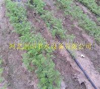 物美廉价陕西滴灌带 过滤器、施肥罐系统