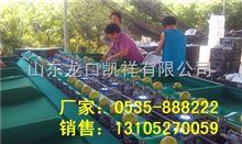 XGJ-SZZ梨选果机销售 黄金梨分选大小 黄金梨选果机厂家销售