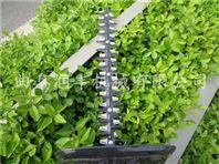 茶树修剪机型号两冲绿篱机规格