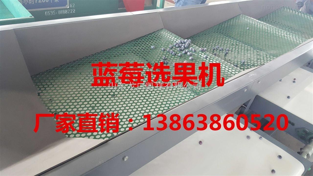 贵州供应蓝莓分选机,蓝莓分选厂家,蓝莓分选机价格