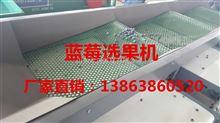XGJ-LM贵州供应蓝莓分选机,蓝莓分选厂家,蓝莓分选机价格