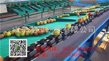 XGJ-DN多功能电脑控制苹果分级机,分选苹果重量大小的选果机,凯祥牌苹果自动分级机