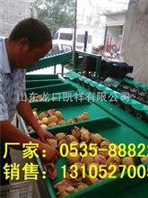 XGJ-L酥梨选果机,果袋机一体化商品处理设备