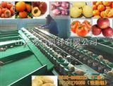 XGJ-TD土豆大小分选 马铃薯称重分选 大小地瓜分选 苹果梨桃分选选果机