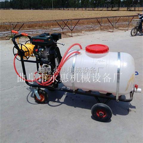 高压手推式消毒车 园林机械高压喷雾机厂家直销