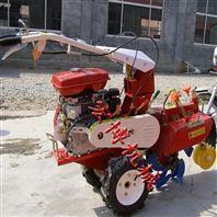 操作简单加工定做开沟机 小型培土机 蔬菜大棚田园管理机