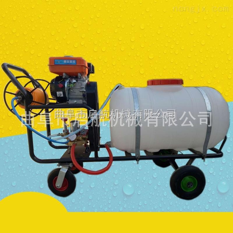 新款四轮车打药机 手推式高压喷雾器 汽油果树打药机厂家