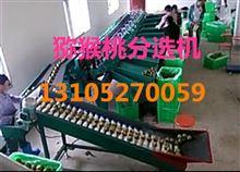 XGJ-MHT新型猕猴桃分选机