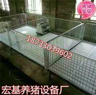 供应双体小猪保育床 仔猪育肥栏加重养猪设备