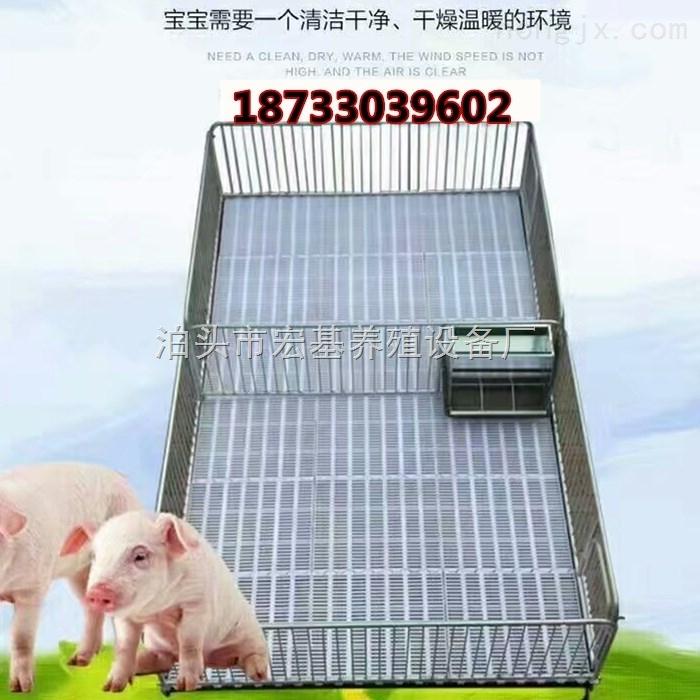 供应小猪保育床加重铸铁保育栏养猪设备