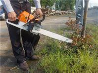 起苗机挖树机型号 链锯断根机规格