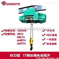 矿用双出绳钢丝绳电动葫芦10吨6米