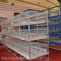 鸡笼厂批发层叠鸡笼设备三层四层鸡笼可订做
