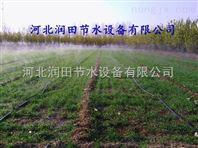 安徽芜湖县微喷带 农田微喷设备喷水带