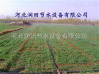 安徽芜湖县微喷带 喷水带 省时省水