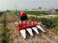小型辣椒收获机 农用自走式侧铺割晒机