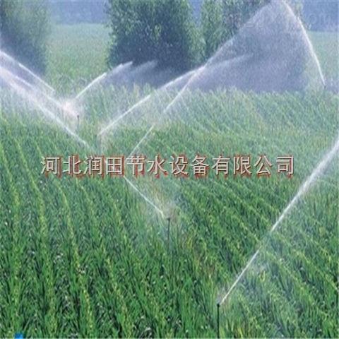 湖南大喷头厂家生产专业节水喷头 株洲市大田喷灌设备齐全